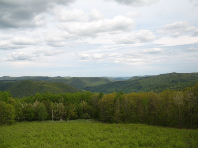 Beautiful rolling hills and forests of The Berkshires, MA, home of Shakespeare & Co.