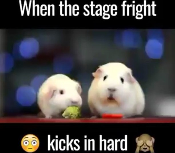 With auditions next week, we thought it appropriate to once again share this hilarious video. Stage fright can strike anyone! Happy Friday.